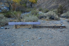 DeathValley_CtoM_037 Photo