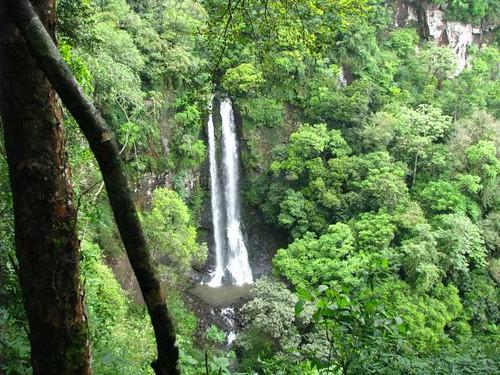 A cascata do trombão