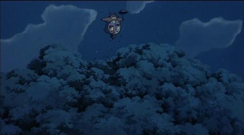 totoro fly above the tree