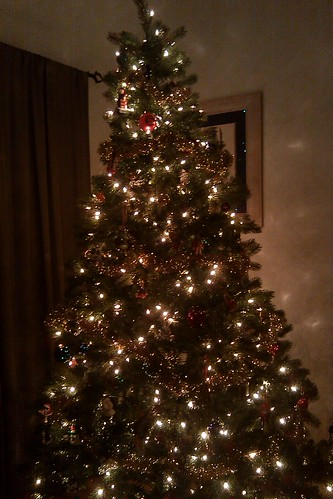 Finally got the tree up...
