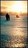 Etherial Fishing (Oooah!) Tags: winter lake snow ice water wisconsin frozen nikon madison 1855mm lakemonona danecounty d5000 vetorama