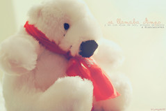 Corazones polares (Lunayda) Tags: bear winter white snow toy oso teddy plushie polar peluche scraf