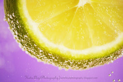 lime-with-bubbles---wm