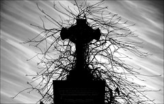 Mithra (OniricoImagen) Tags: sky cemetery dark cross time faith silhouettes cruz will and erase mithra f oniricophotographies ignaciopelaezherrera svartsinn
