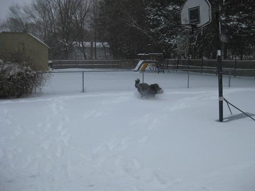 December 2010 016