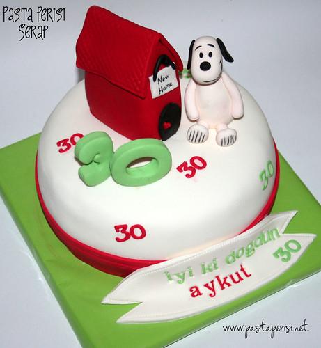 Snoopy 30 yaş pastası