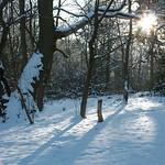 Sun & Snow thumbnail