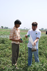 India - Sustainable Agriculture