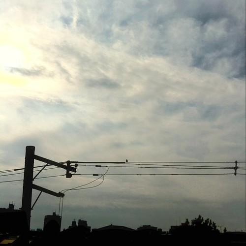 今日の写真 No.116 – 昨日Instagramに投稿した写真(2枚)/iPhone4 + Photo fx
