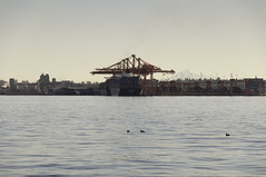 Freighters and Mt. Baker