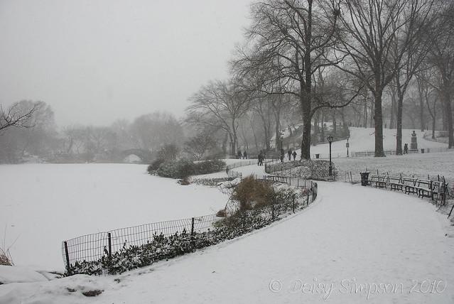 blizzard central park lake