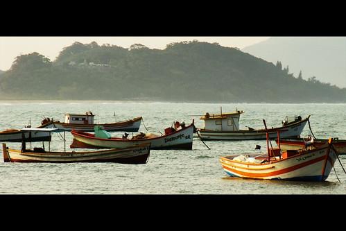 Barcos - Armação, Florianópolis - SC