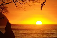 Al agua! (andres.pereira) Tags: sunset costa beach atardecer playa rica samara