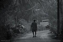 I will have to  walk for myself... (J Anand) Tags: morning people bw monochrome sepia canon blackwhite village streetphotography pune pp konkan villagelife morninglife canon500d ruralindia malvan vengurla punephotographers photographerspune janand lifeinkonkan nivati anandjadhav wwwphotographersatpunecom sindhadurga
