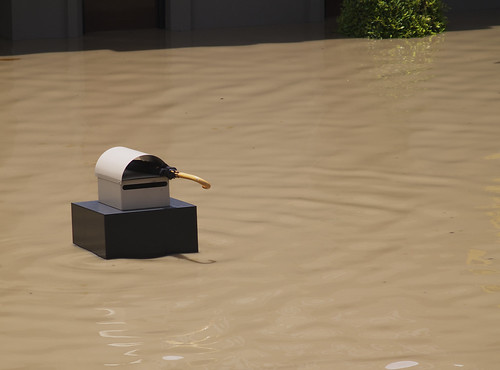 Need an umbrella? - Brisbane Floods