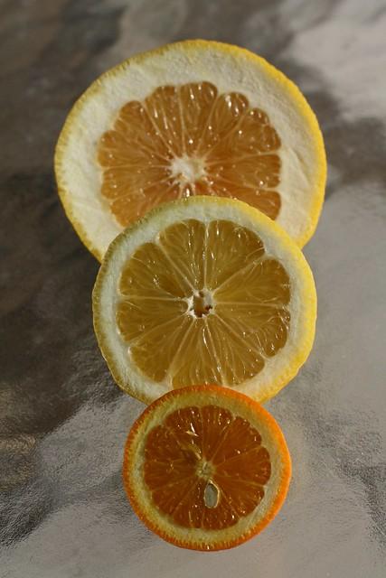 Citrus Report 2010/2011