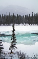 even on a frozen day, there is beauty in banff (Matthew P Sharp) Tags: winter snow canada cold ice water river nationalpark wideangle alberta 1750 banff tamron
