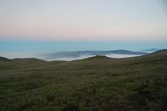 EBRPD - Mission Peak - Along the trail Photo