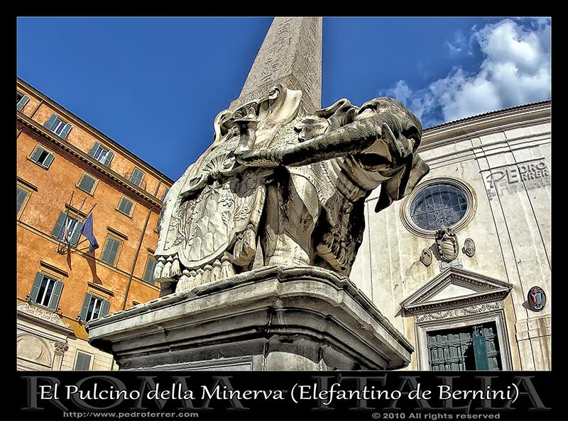 Roma - El Pulcino della Minerva (Elefantino de Bernini)