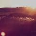 Luces y Sombras 17.02.2011- Alternativa 3. ¿Es Marte el destino de los privilegiados?