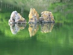 Ritsurin Kōen - detail in the pond - Explore #343 (M_Strasser) Tags: japan garden explore zen takamatsu coth ritsurinkoen explored citrit theunforgettablepictures coth5 blinkagain