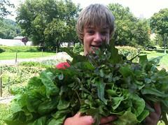 garden jack 2