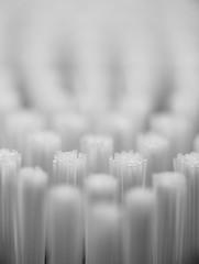 Bristling  *Explore* (Catskills Photography) Tags: macromondays inarow odc brushbrushingbrushed macro bokeh brush bristles abstract blackandwhite canon60mmusmmacrolens