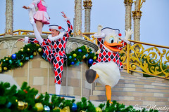 Celebrate The Season (disneylori) Tags: celebratetheseason donaldduck disneycharacters nonfacecharacters characters christmas magickingdom waltdisneyworld disneyworld wdw disney