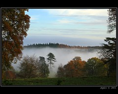Mist In The Valley. (Picture post.) Tags: autumn trees mist green nature landscape bluesky paysage arbre soe brume coth greatphotographers supershot platinumheartaward coth5 mygearandme