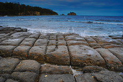 Tessellated Pavement (shinbonerbaz) Tags: sony australia tasmania alpha a200 dt  polariser tessellatedpavement eaglehawkneck sal1870 minoltaamount sonydt1870mm