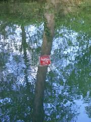 Divieto di pesca - Fishing prohibited (magellano) Tags: france reflection tree leaves sign foglie river fishing fiume albero reflexions pesca francia segnale riflesso divieto mirrorser neuvillesurseine