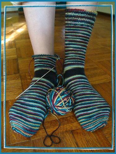 cleopatra socks