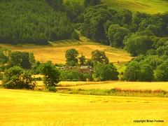 Dull, Perthshire (B4bees .(2m views)) Tags: rural buildings community farming perthshire dull aberfeldy