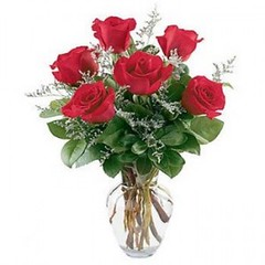 "#34ED $42.95 1/2 Dozen Roses Vased • <a style=""font-size:0.8em;"" href=""http://www.flickr.com/photos/39372067@N08/5402993456/"" target=""_blank"">View on Flickr</a>"