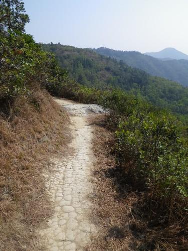 20110131 High Junk Peak 15km Trail Run