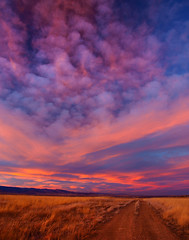 Boulder County Sunset (Bryce Bradford) Tags: road county sunset field grass olympus boulder dirt zuiko cirrus altocumulus f3556 1545mm e520