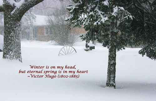 ODC_Quotation_Winter