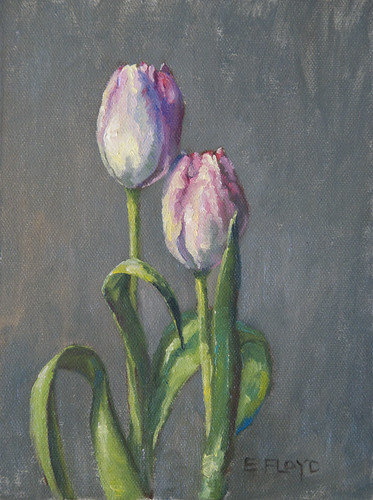 20110123 two tulips 8x6