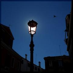 Day for night (Periegese) Tags: venice light sky italy sun bird lamp night italia day pigeon jour ciel vene