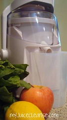 Juice Machine with Fruit