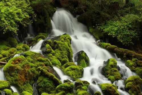 フリー写真素材, 自然・風景, 滝, 森林, アメリカ合衆国, 地震,