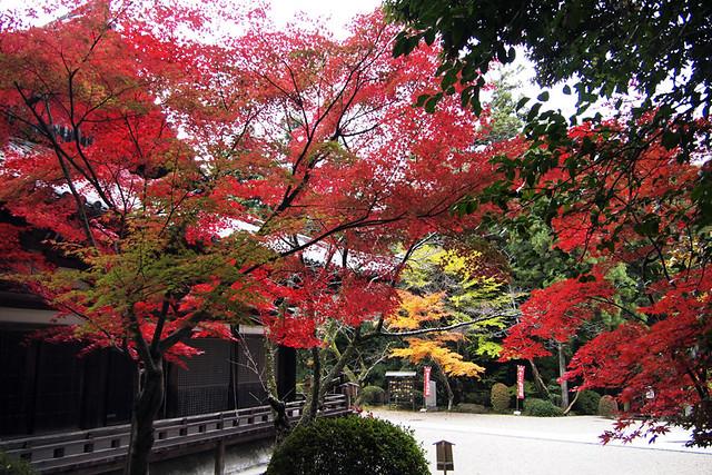 101115_095043_霊山寺_本堂(国宝)