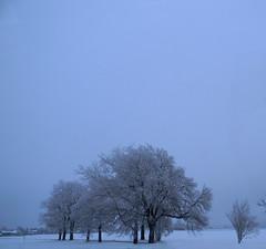 DSCN0255 somewhere in Austria (pinktigger) Tags: blue snow cold landscape tres