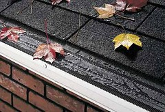 Gutter Shingle
