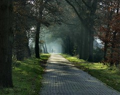 Horserider and a hiker on the brick road (joeke pieters) Tags: light holland netherlands landscape licht nederland hiker achterhoek winterswijk gelderland wandelaar brickroad horserider blueribbonwinner 1656 ruiter kotten supershot platinumheartaward mygearandme mygearandmepremium mygearandmebronze mygearandmesilver mygearandmegold mygearandmeplatinum artistoftheyearlevel4 artistoftheyearlevel5
