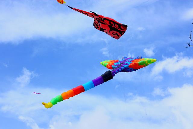 Kites Festival 2011_108