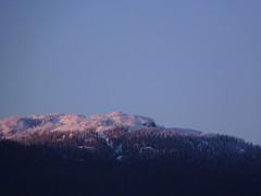 Some mountain... (SrslyKris) Tags: mountain snow nature forest walk sfu hike photowalk burnaby burnabymountain pandoratrail kmphot