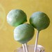 "Margarita Cake Pops • <a style=""font-size:0.8em;"" href=""https://www.flickr.com/photos/59736392@N02/5462861971/"" target=""_blank"">View on Flickr</a>"