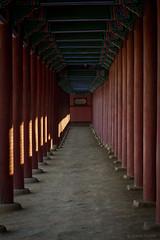 Beams and Columns (davidkoiter) Tags: wood canon eos wooden post pillar palace beam seoul 7d l column usm southkorea 70200 f4 gyeongbokgung