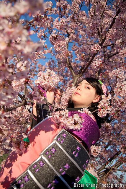 Sakura2011_1166
